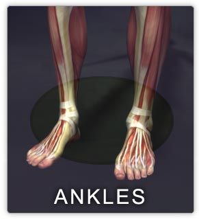 mobility-of-the-ankle-joint