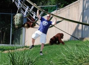 doing-pull-ups-with-orangutans