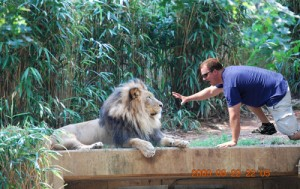 smitty-taunting-lion